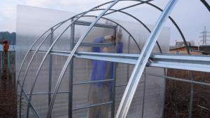 Фото: Покрытие металлической теплицы листами поликарбоната