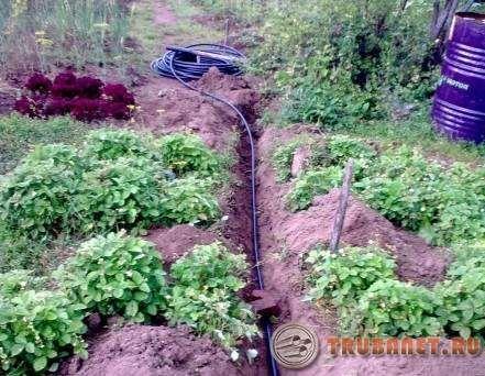 фото: Дачный водопровод из пластиковых труб