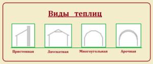 Фото – виды парников из ПВХ по форме верхнего строения