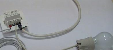 Фото — К терморегулятору подсоединяем лампочку